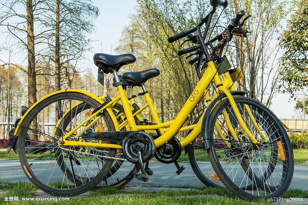 ofo自行车图片