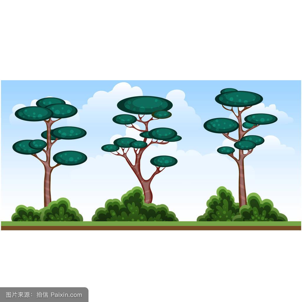 不同的卡通树被孤立在一幅画上,夏天的树,灌木丛,松树图片