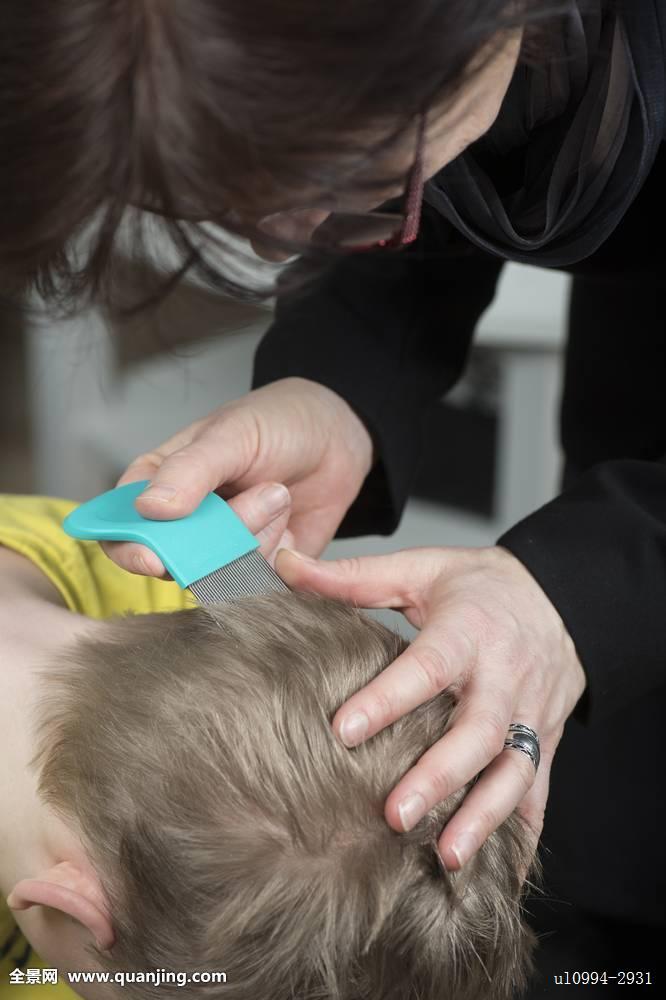 头皮,虱子,人,男孩,卫生,头部,头发,孩子,刷,预防,白人,清洁,儿童,挠图片