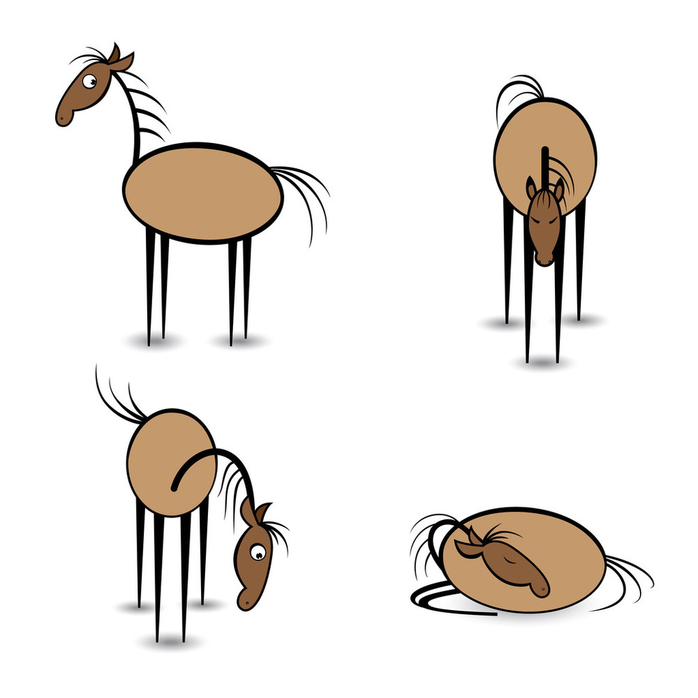 看,马,美国文化,母马,农场,设计,式样,跳,头发,尾巴,位置,西,小马图片