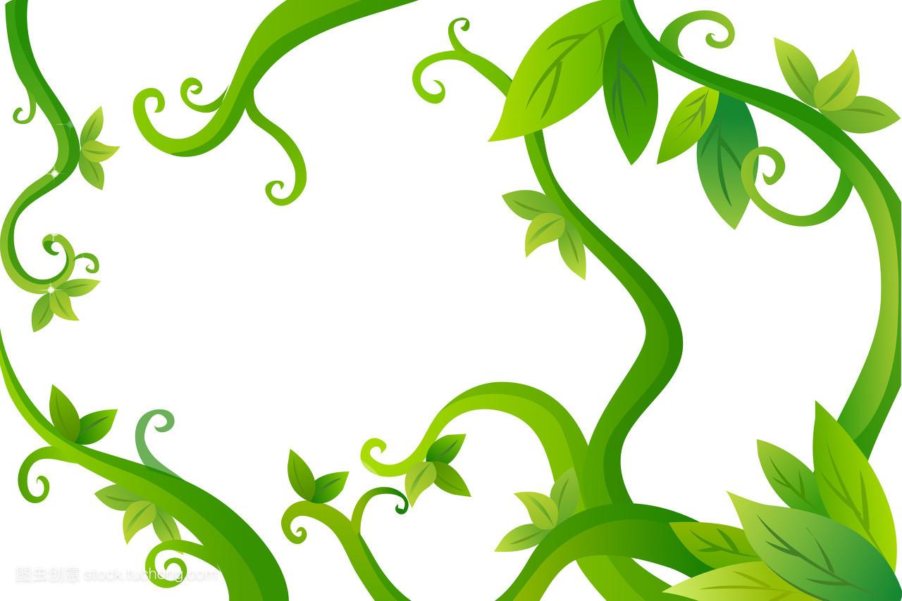 有机蔬菜,气候,有色,气象,直线,生长,树叶,矢量,有机,插画,植物,爱图片