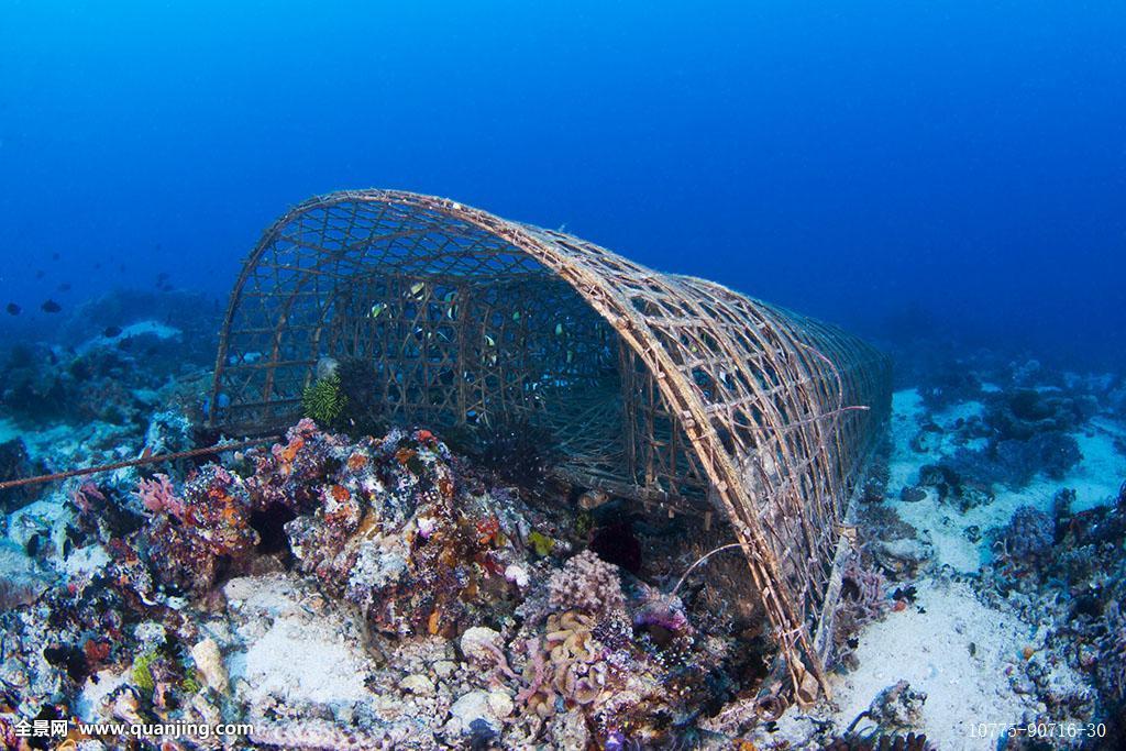 捕鱼,地面,手制,印度尼西亚,产业,海洋生物,网,海洋,菲律宾,礁石,海底图片