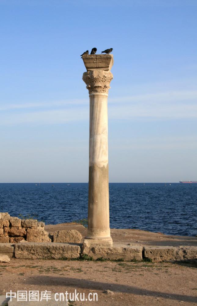 某建筑物有6根大圆柱形柱子要油漆,已知柱子的底面直径是8分米,图片