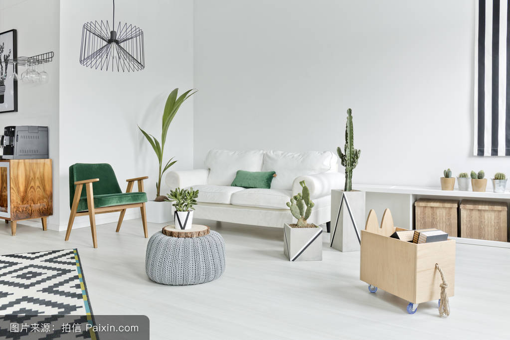 活的,斯堪的纳维亚风格,现代的,扶手椅,安慰,白色,家,北欧风格,家居图片