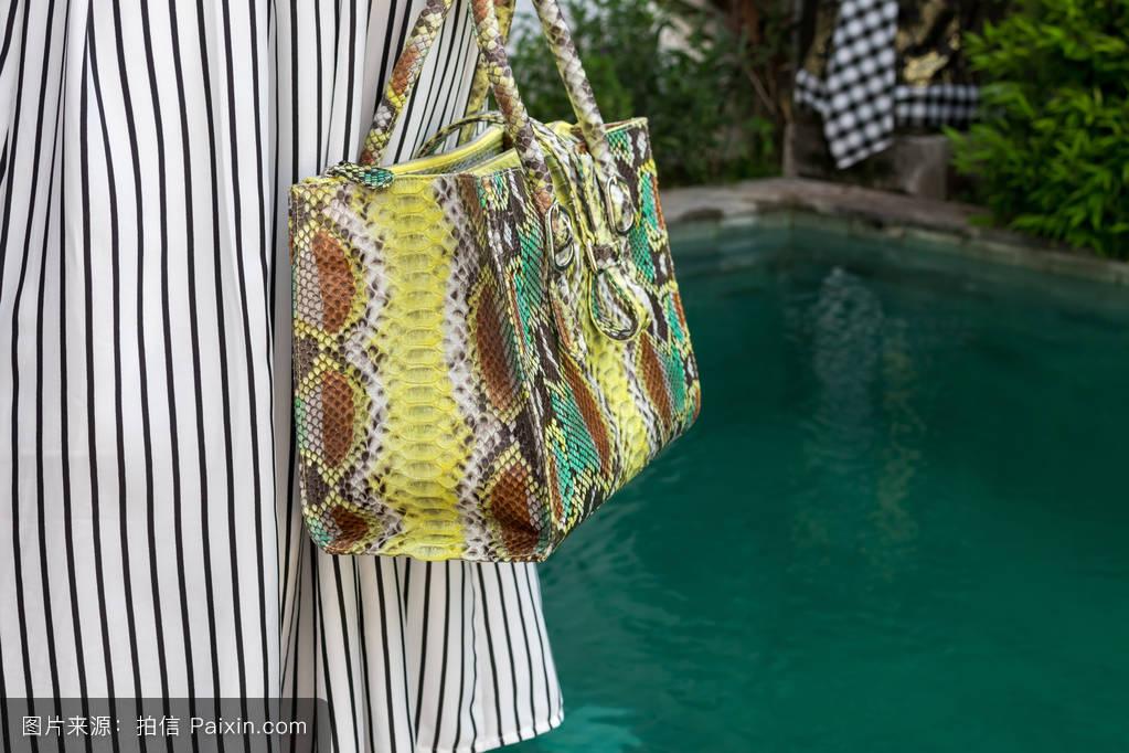 时尚的女人拿着蛇皮袋豪华python.优雅的服装.时髦女士手里的钱包.