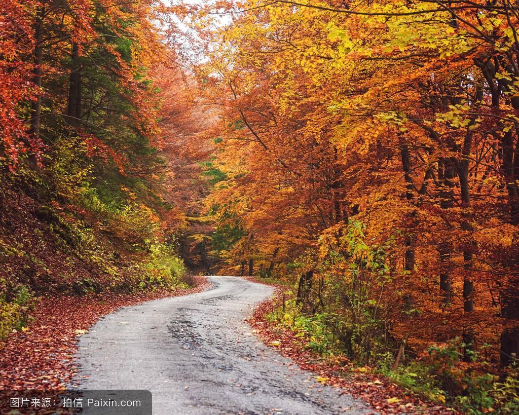 谁�y�#�.��g,9b�9.�_forest�%96�洛伐克的途�%