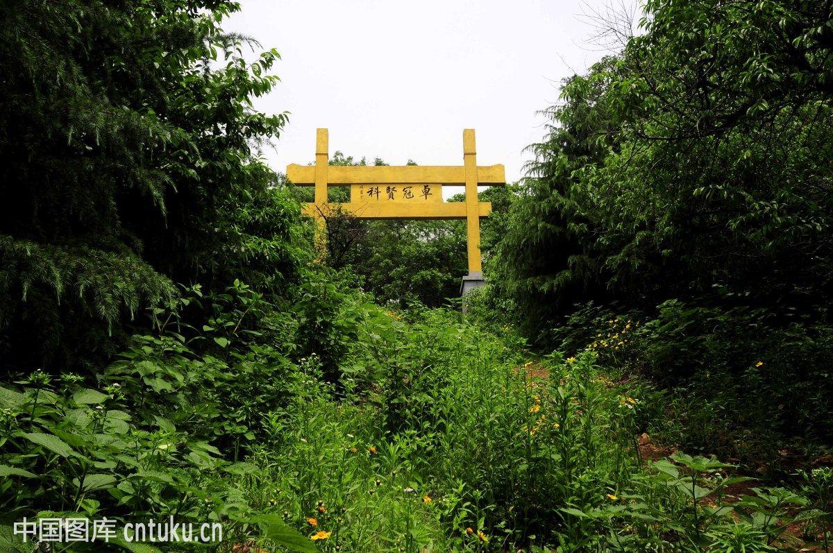 南京老山森林公园 (1200x797)图片图片