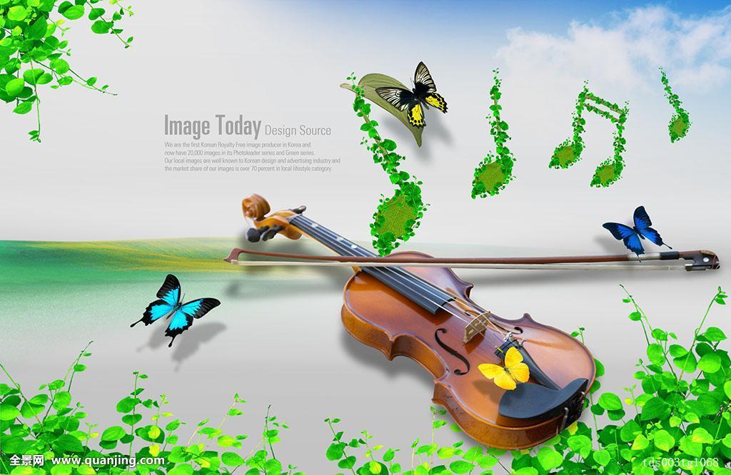 昆虫蝴蝶动物设计文化小提琴背景乐器艺术音乐音符草合成图片
