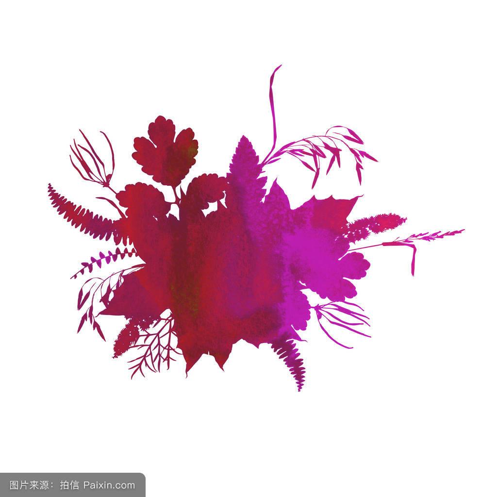 分离,花园,轮廓,叶子,水彩画,设计,秋天的数字,秋天的树叶剪贴画,手绘图片