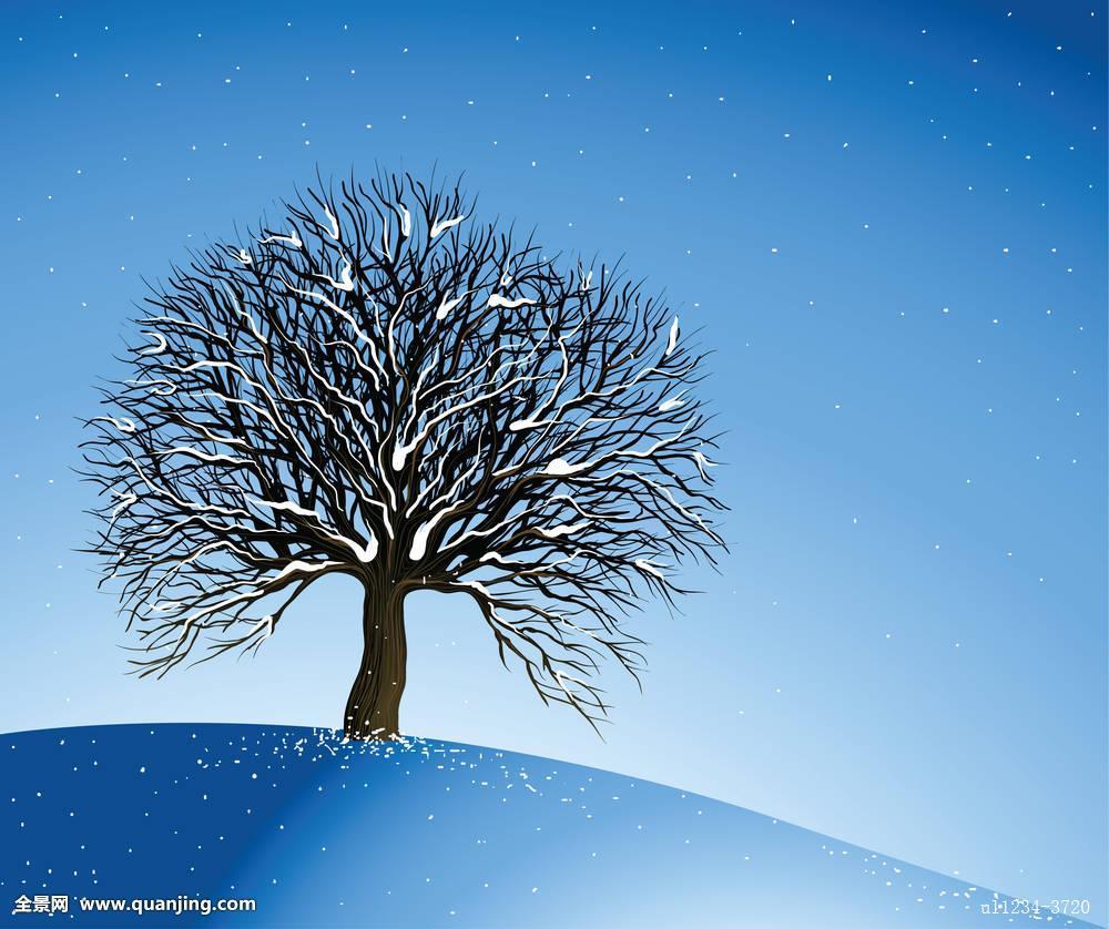 义马市招聘�y�k��d_冬季风景,孤单,树