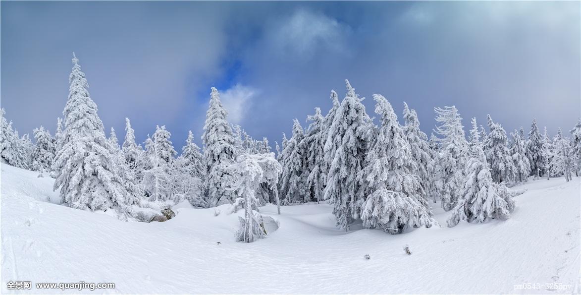 雪��/~���x+�x�&�7:d��_树脂,冬季风景,冬天,德国,联邦,共和国,苍穹,天空,雪,树,寒冷,成熟,霜