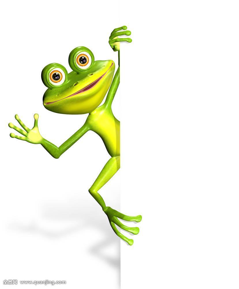 青蛙,白色背景图片