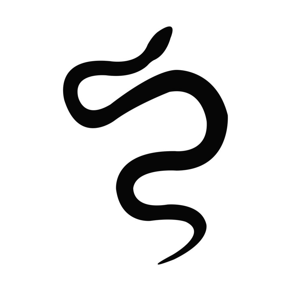 巨蟒,蝰蛇,绿色,皮肤,蛇,设计,生物学,时尚,矢量图,图标,纹身,眼镜蛇图片