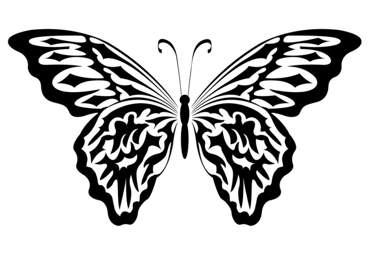 飞,孤独,黑色,蝴蝶,华丽的,绘,绘画插图,昆虫,矢量图,式样,图表,纹身图片