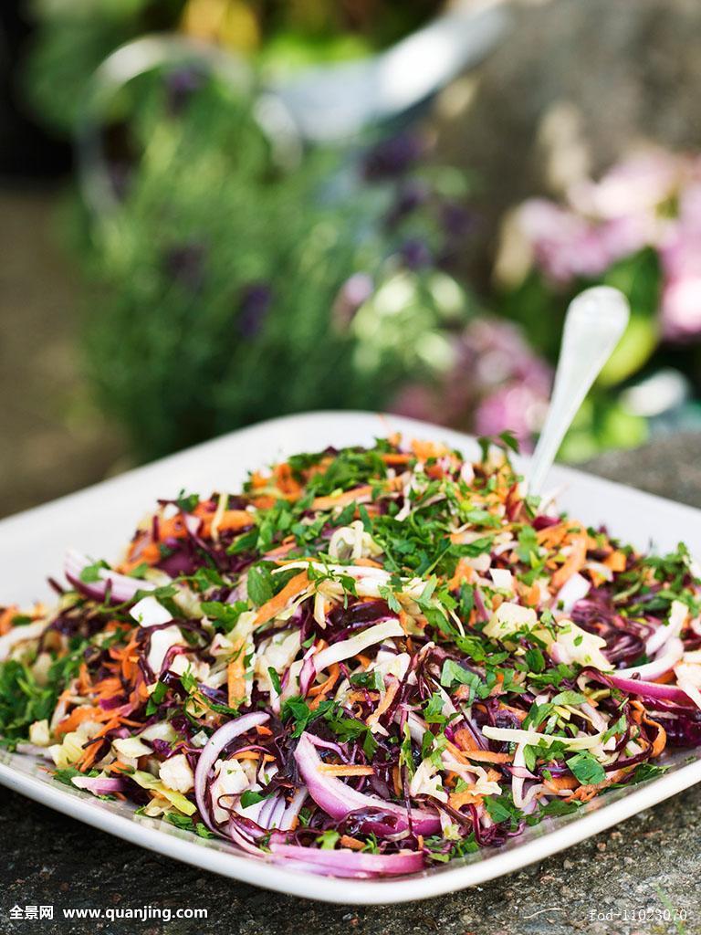 根菜类,沙拉,开胃菜,序列,柔光,失焦,蔬菜,素菜,菜肴,素食,素食沙拉图片