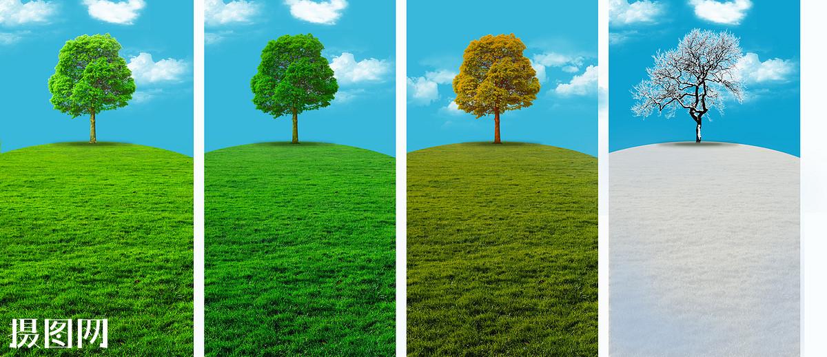 春夏秋冬,科技,草坪,草地,景观,自然,绿草,宽广,广阔,绿色,季节,四季图片