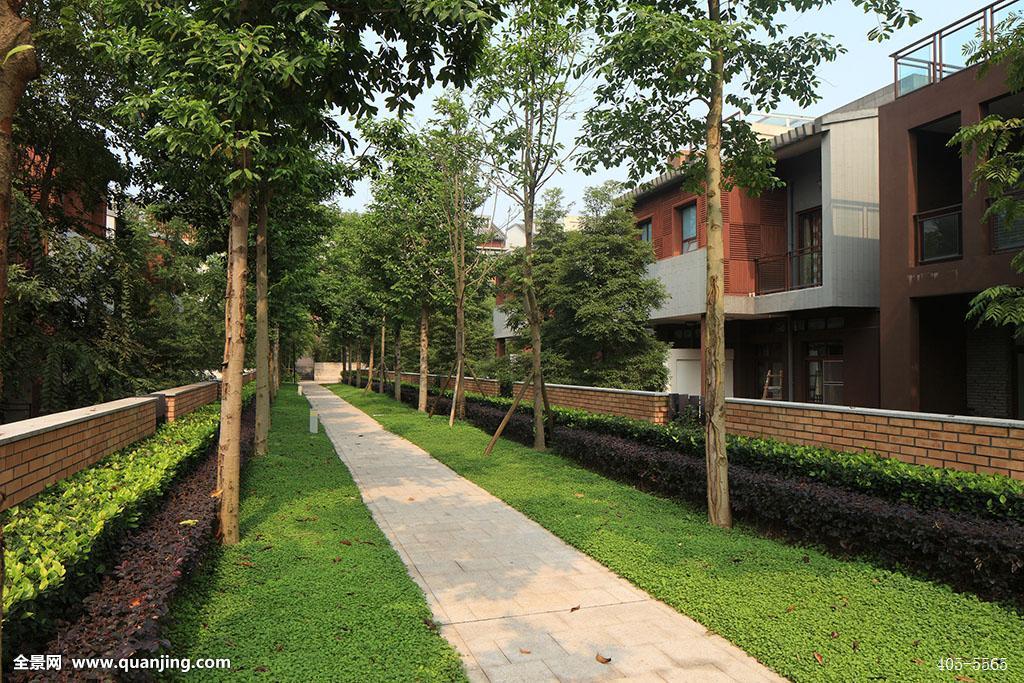 高档住宅,别墅区,别墅,别墅建筑,红墙,直路,中国别墅,中国园林,中式图片