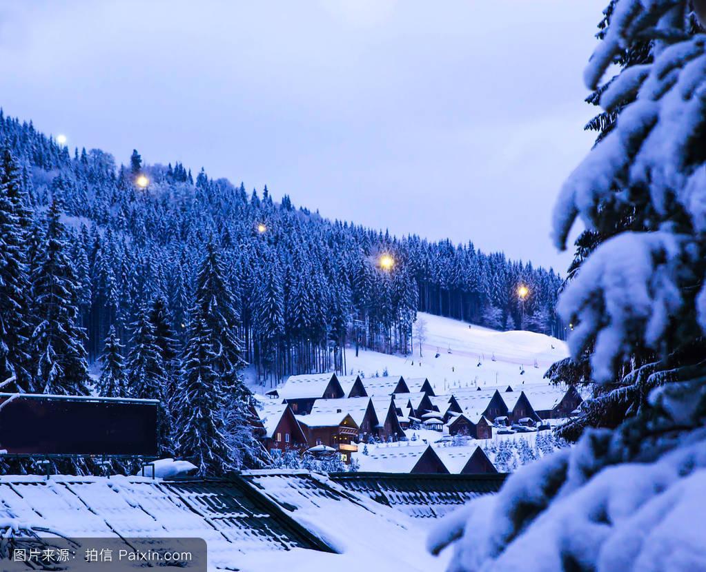 山���!�-��.�9`a�f-:##_天空,木材,蓝色,景观,雪,松木,雪花,分支,阿尔卑斯山脉,自然,木制的