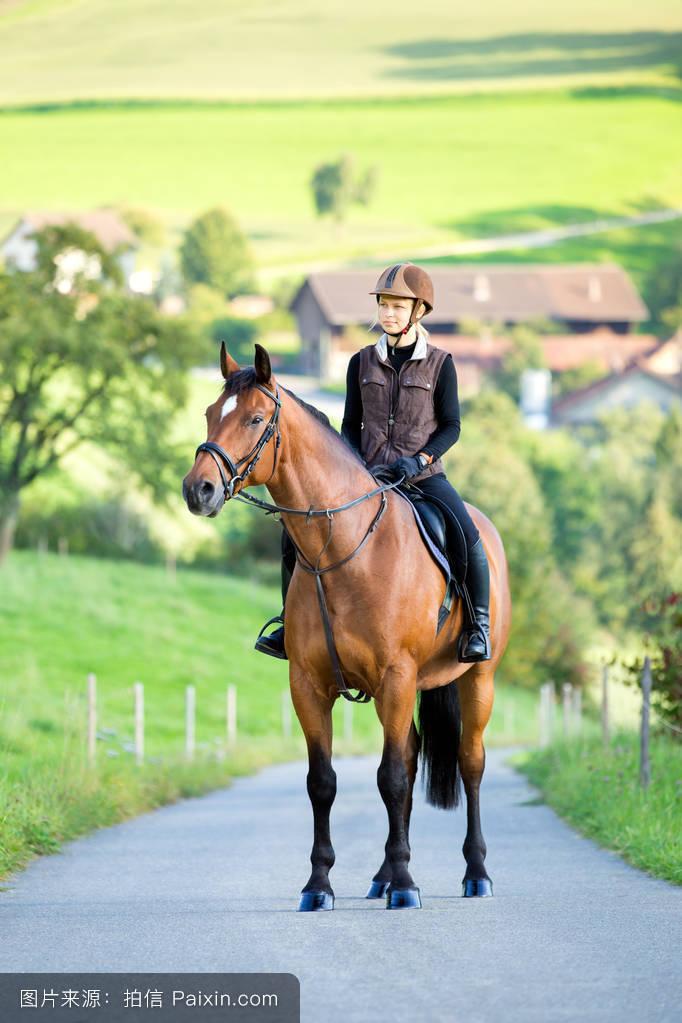 自然种马骑士浪漫的站立奉献外部爱抚女人枣红马缰绳运动