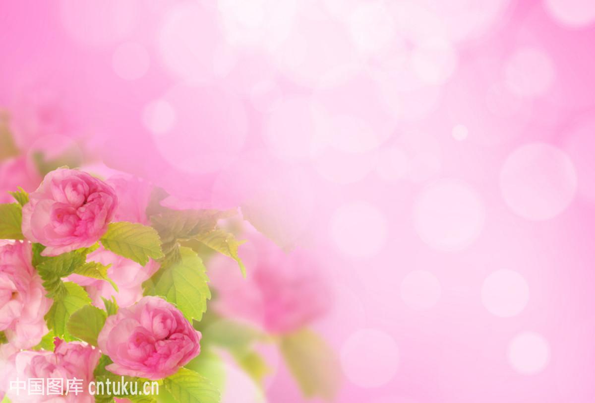 性8春暖花开公告_yahoo japan 日本 wwwjavhdcom下载性吧春暖花开亚洲转帖无插件