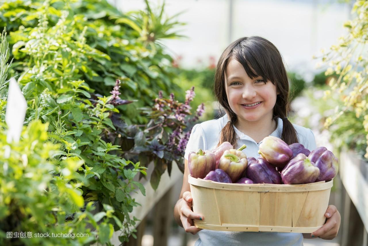 有机食品,蔬菜,自信,篮子,年青人,看镜头,小孩,稚子,白种人,小孩子图片