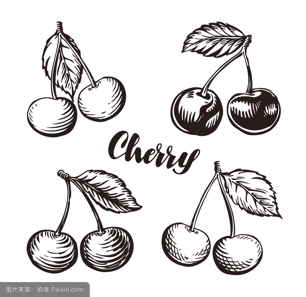 食物的,市场,自然,字体,偶像,纹身,美食家,素描,背景,要素,水果,樱桃暧昧单色v食物图片