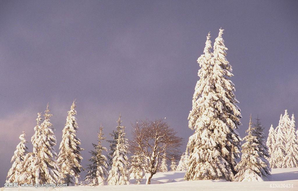 捷克共和国,欧洲,云,冬天,1999年,风景,35毫米图片