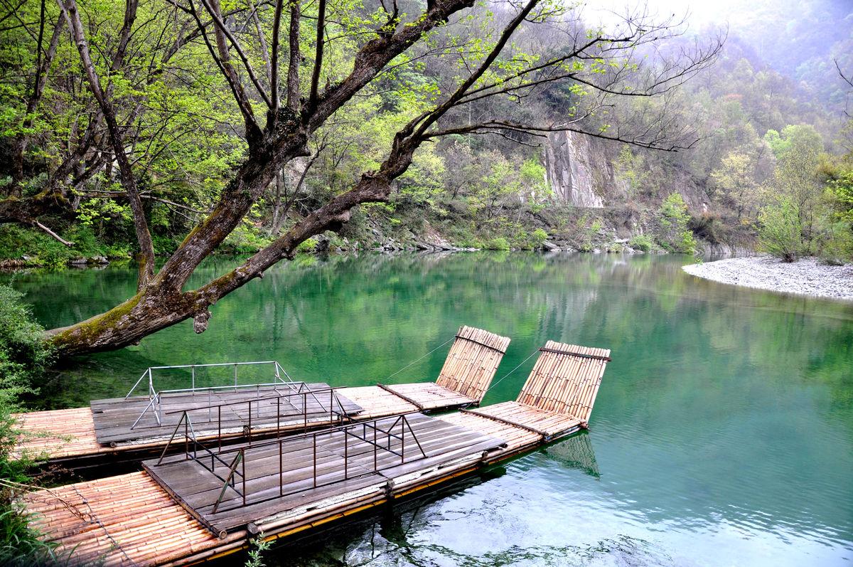 康县阳坝自然风景区的地理位置