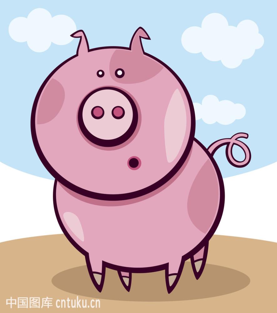 惊讶猪表情包分享展示图片图片