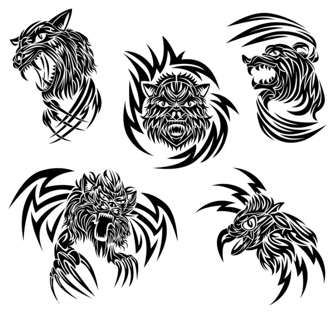 火焰,狼,鸟,燃烧,设计,生物,狮子,矢量图,纹身,熊,野生动物,鹰,装饰图片