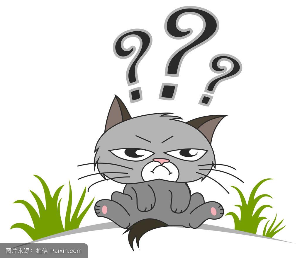 猫咪五个问号表情包分享展示图片