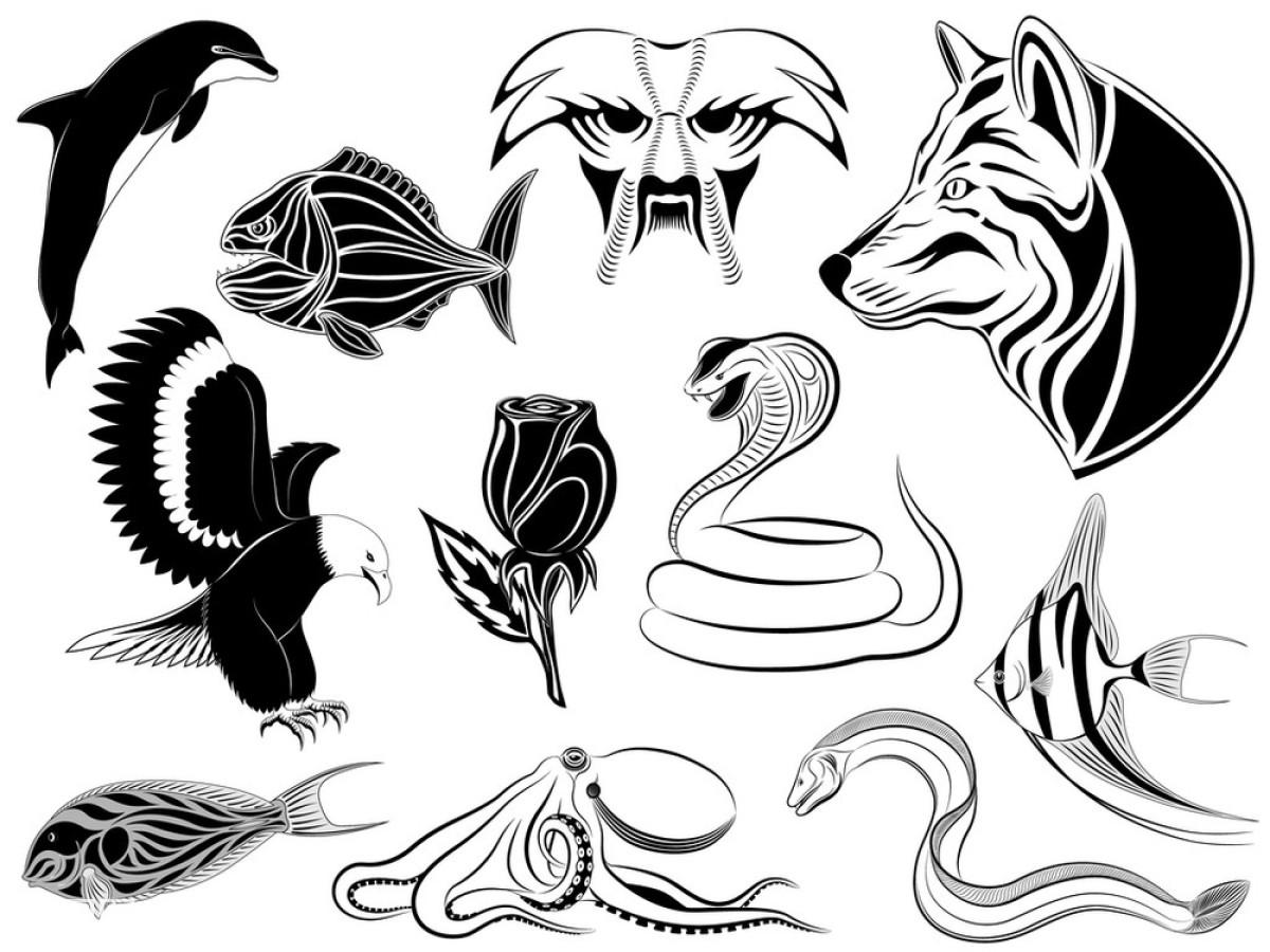 花,绘画插图,狼,老鹰,玫瑰,鸟,蛇,水虎鱼,天空,纹身,咸水鱼,眼镜蛇图片