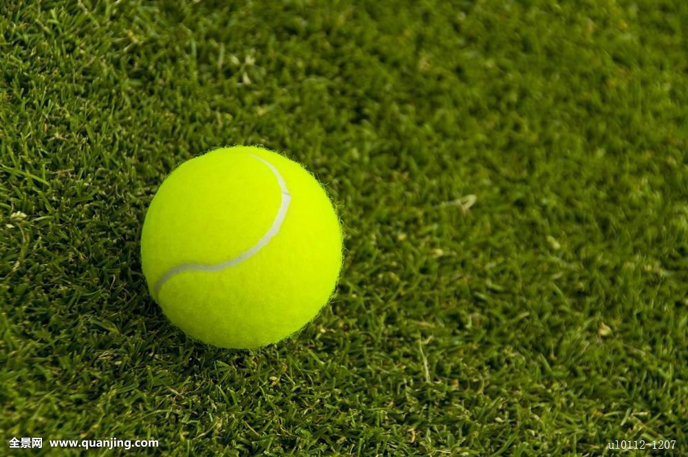 网球,草坪,球场图片