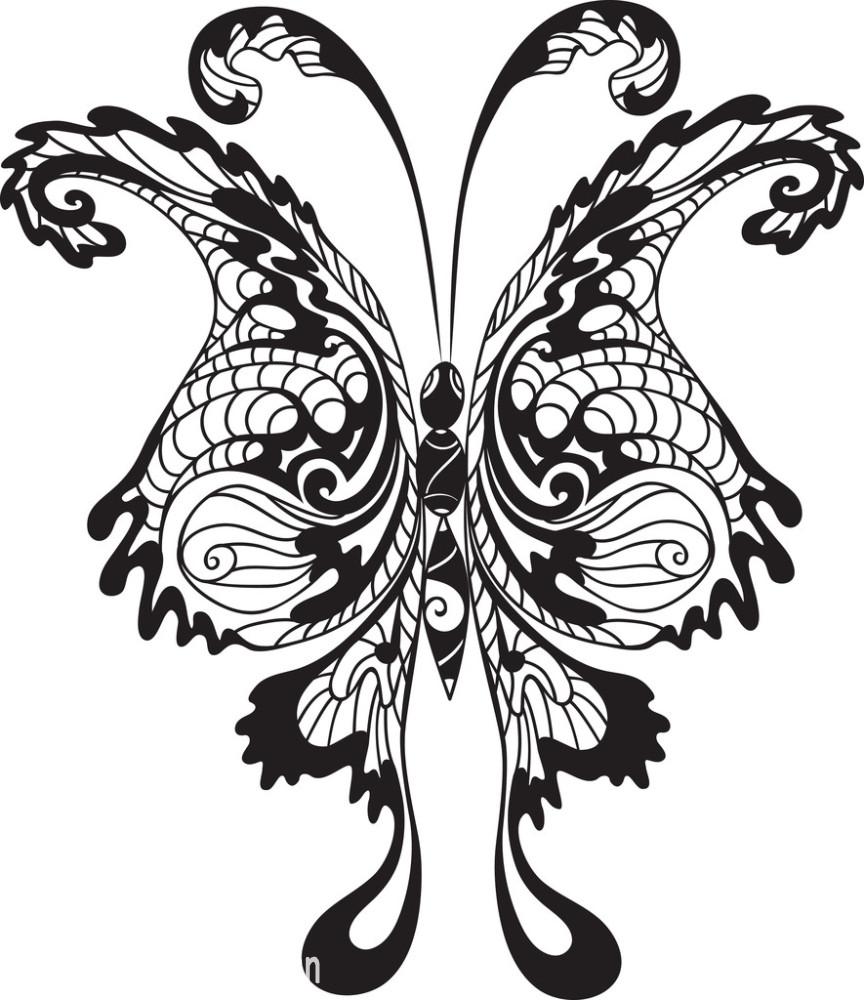 黑蝴蝶图片