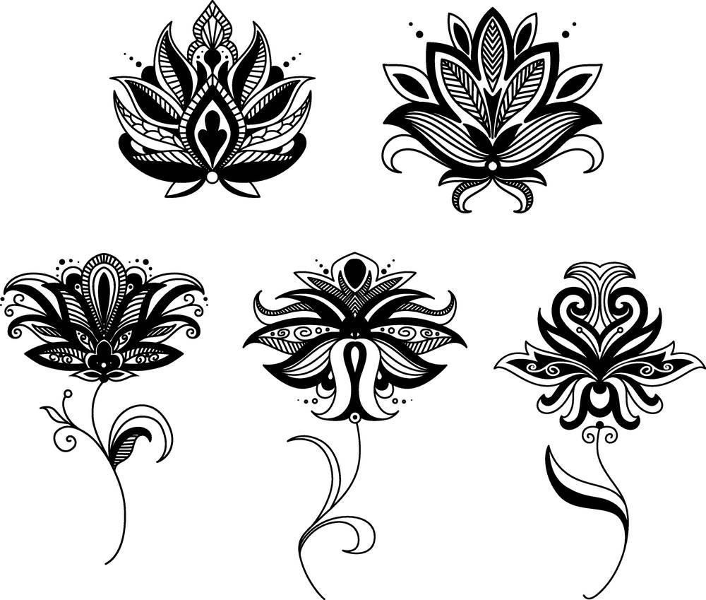 佩斯利螺旋花纹,花图片