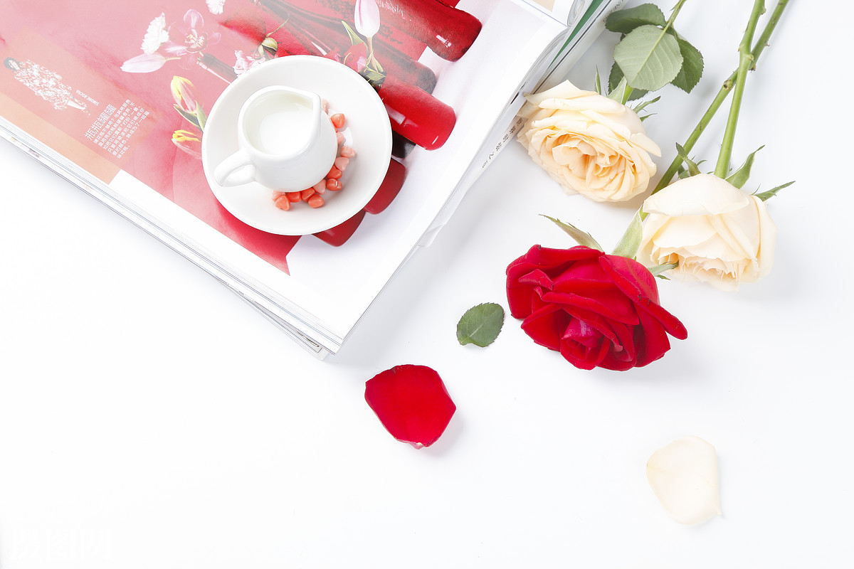 玫瑰花桌面,玫瑰花场景,素材,鲜花,花瓣,花朵,玫瑰,情人节,小清新图片