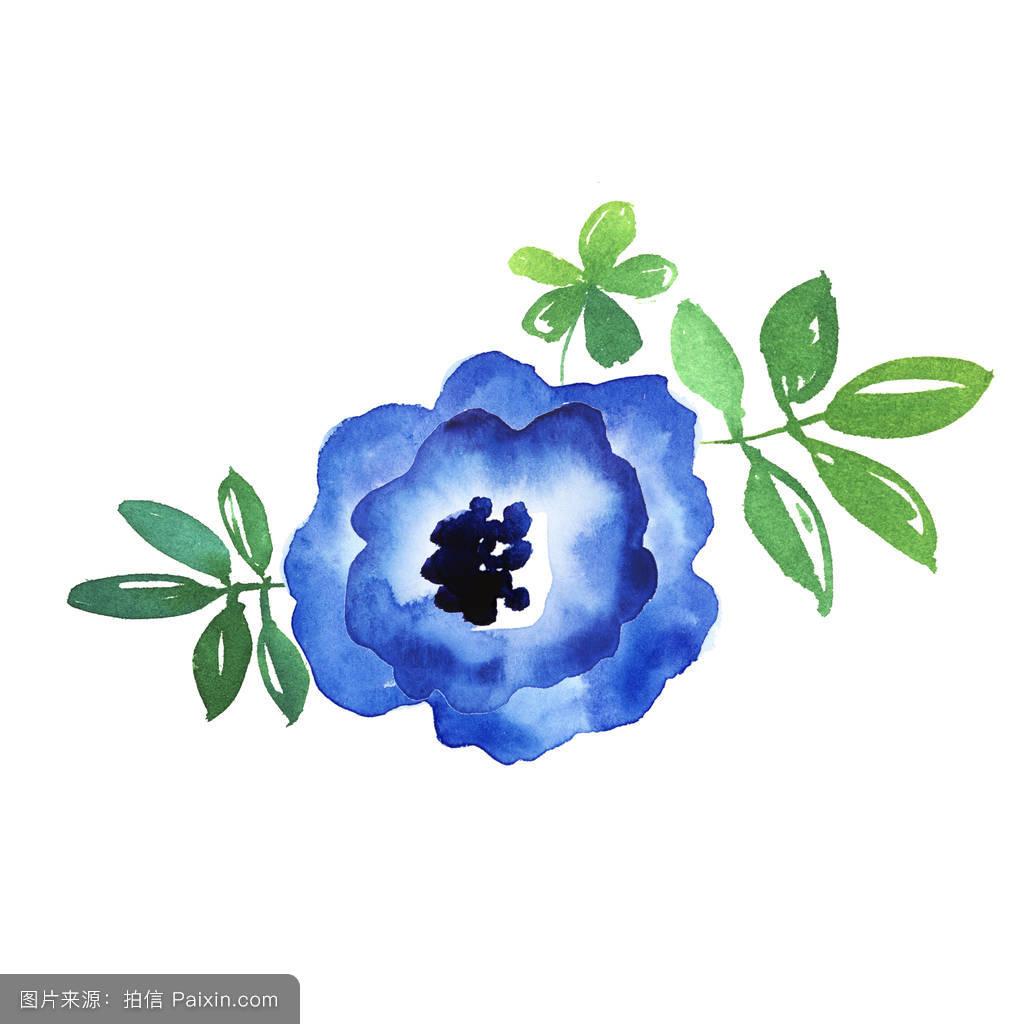 水彩画花卉简单一点分享展示图片