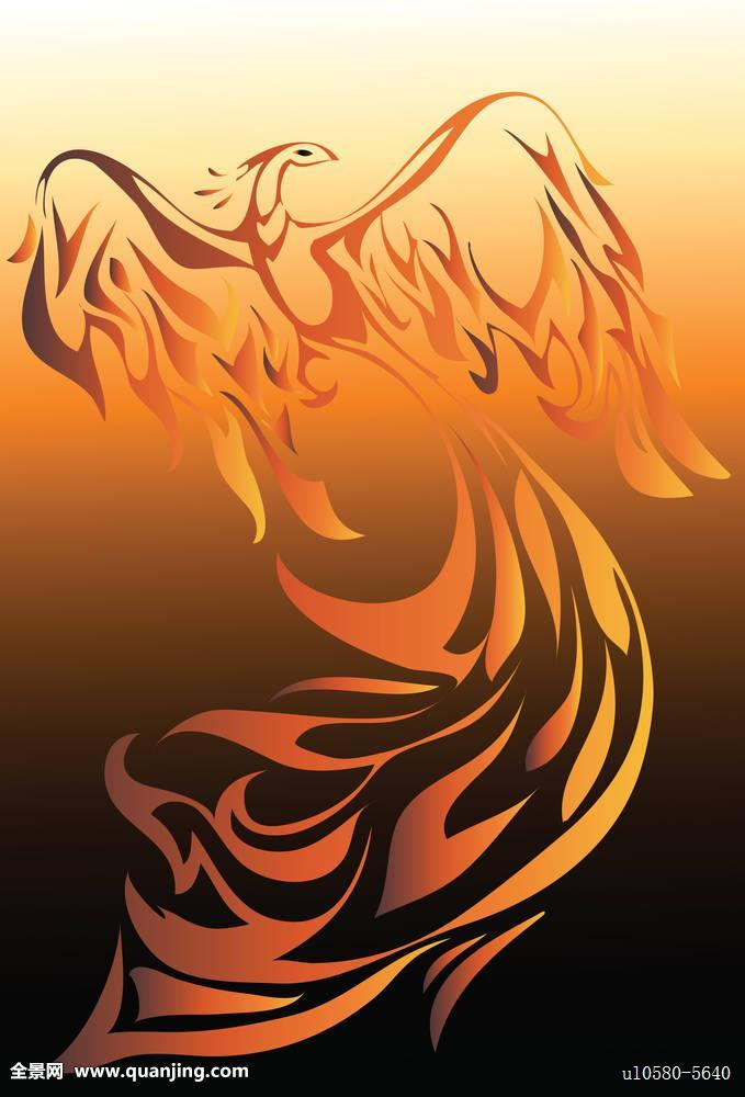 鸟,插画,火,火焰,热,设计,翼,飞行,羽毛,燃烧,黑色,神话,红色,传说图片