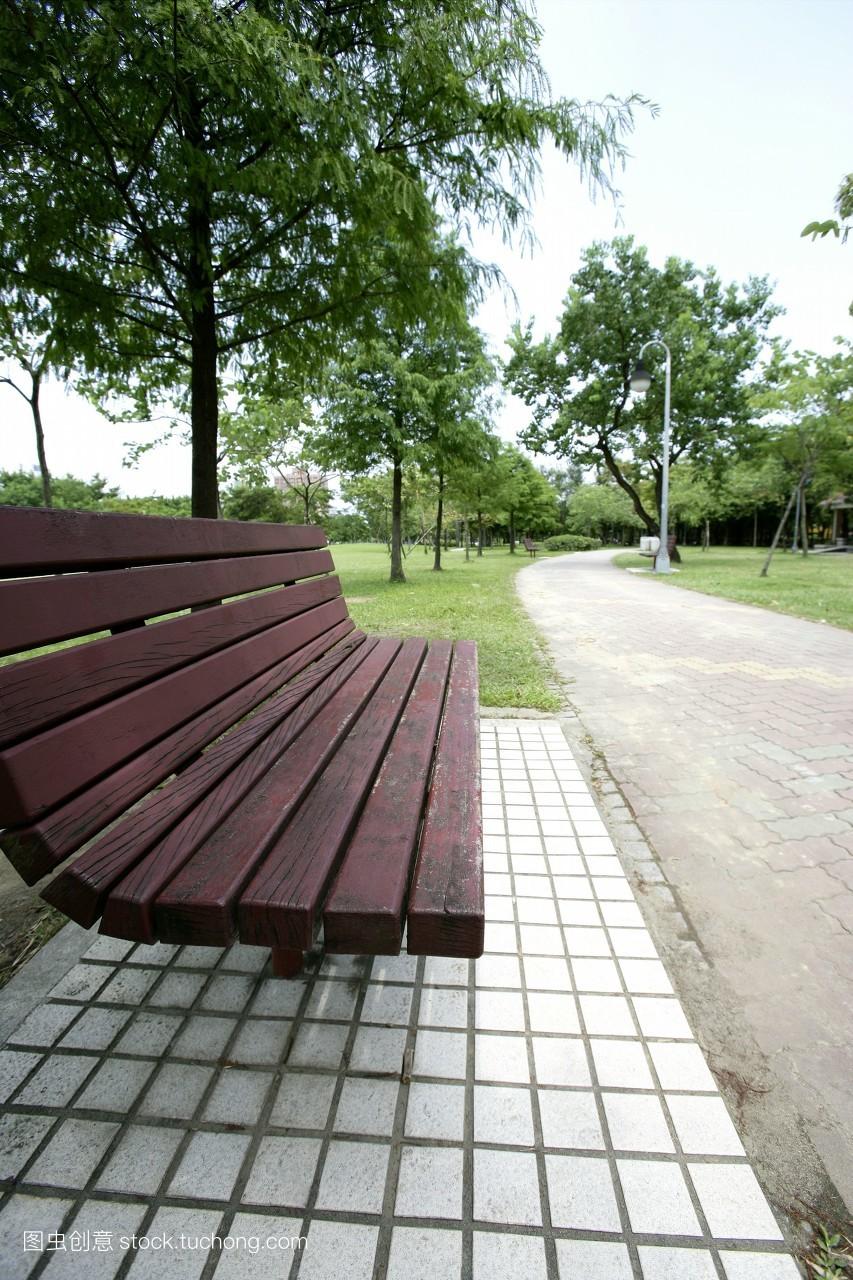林荫,林荫小径,椅子,花园,夏天,小径,绿地,步道,绿色,公园,无人,春天图片