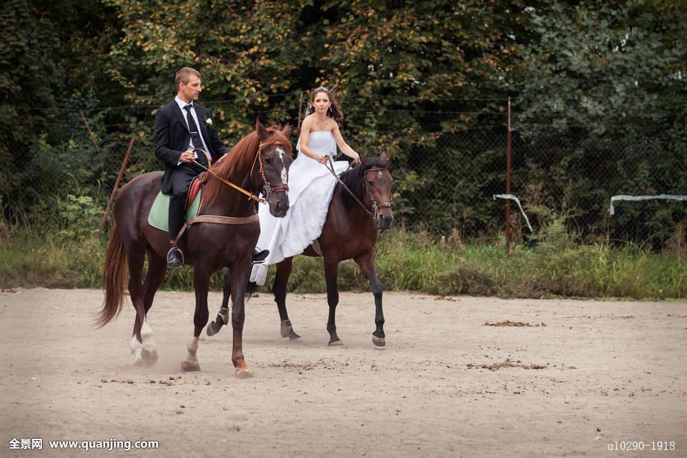 婚礼,情侣,马图片