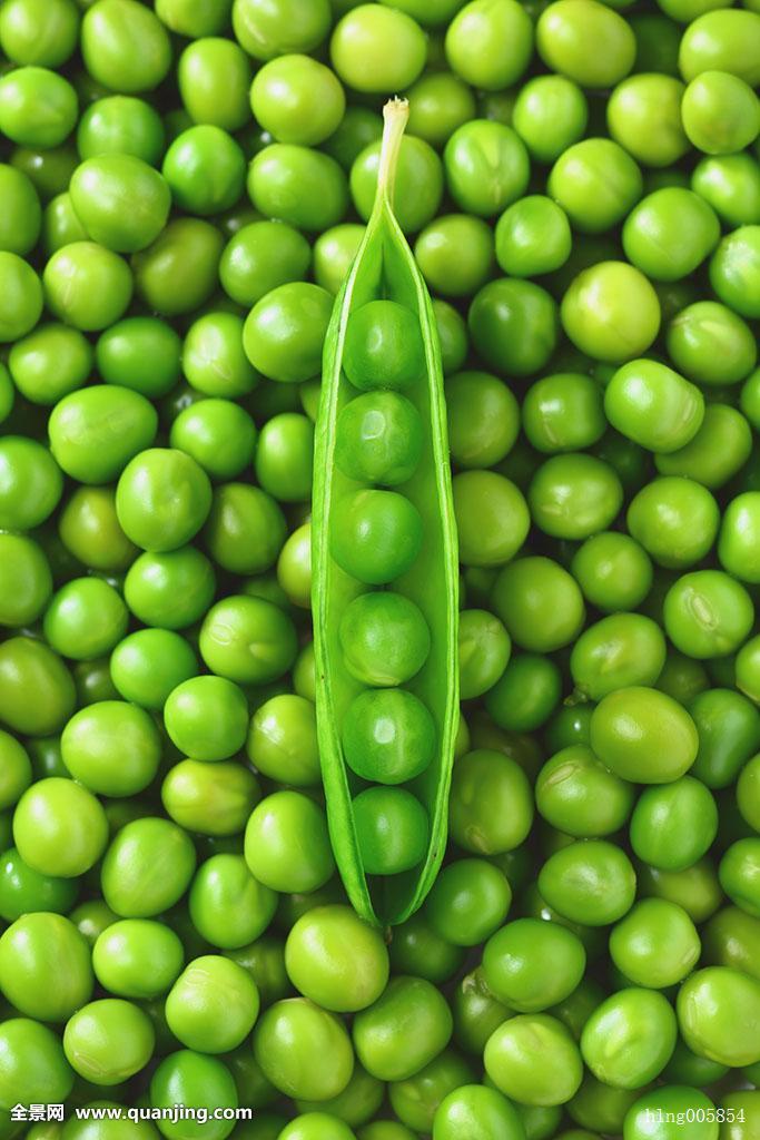 青�9/&�b�K��X��R��S����_青豌豆