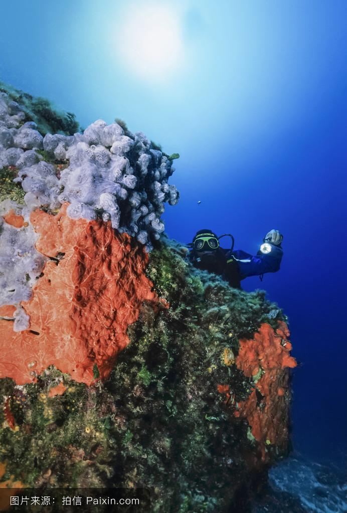 �mu�6_w.照片;2006年6月13日,潜水员和海绵(胶片扫描)-编辑