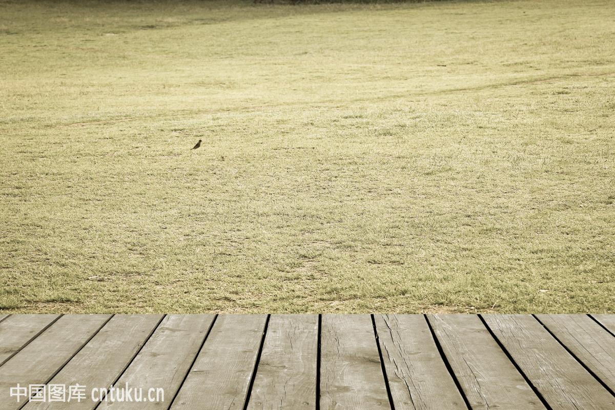 spring,turf,lawn,背景幕,材料,草,草地,春季,地形,干净,公园,户外