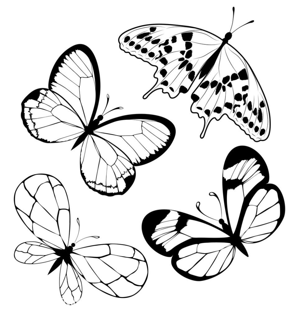 设置黑蝴蝶的纹身图片