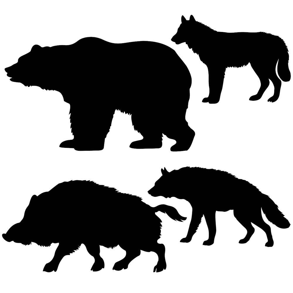 漂亮,创意,装饰,图案,卷,时尚,优雅,素描,茎,自然,动物,熊,公猪,狼图片
