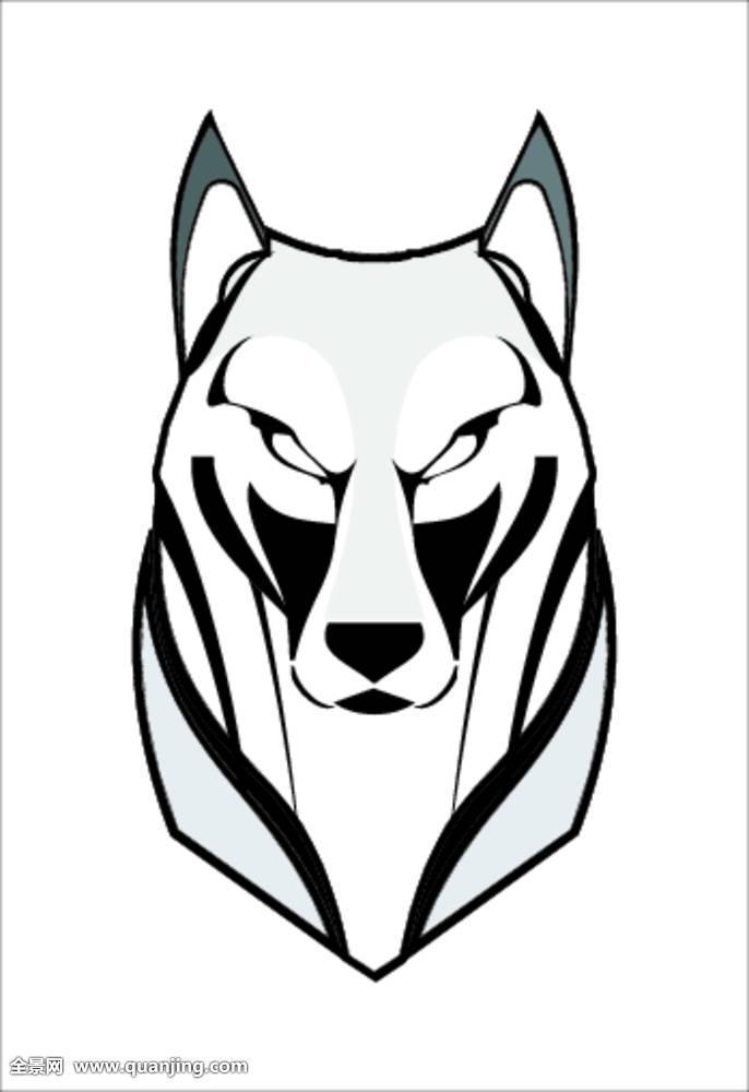 运动,灰色,白色,危险,发现,特写,脸部,动物头部,食肉动物,装饰,设计图片