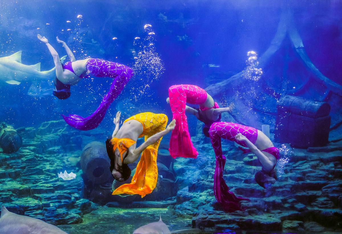 青岛海底世界美人鱼_海底美人鱼舞蹈