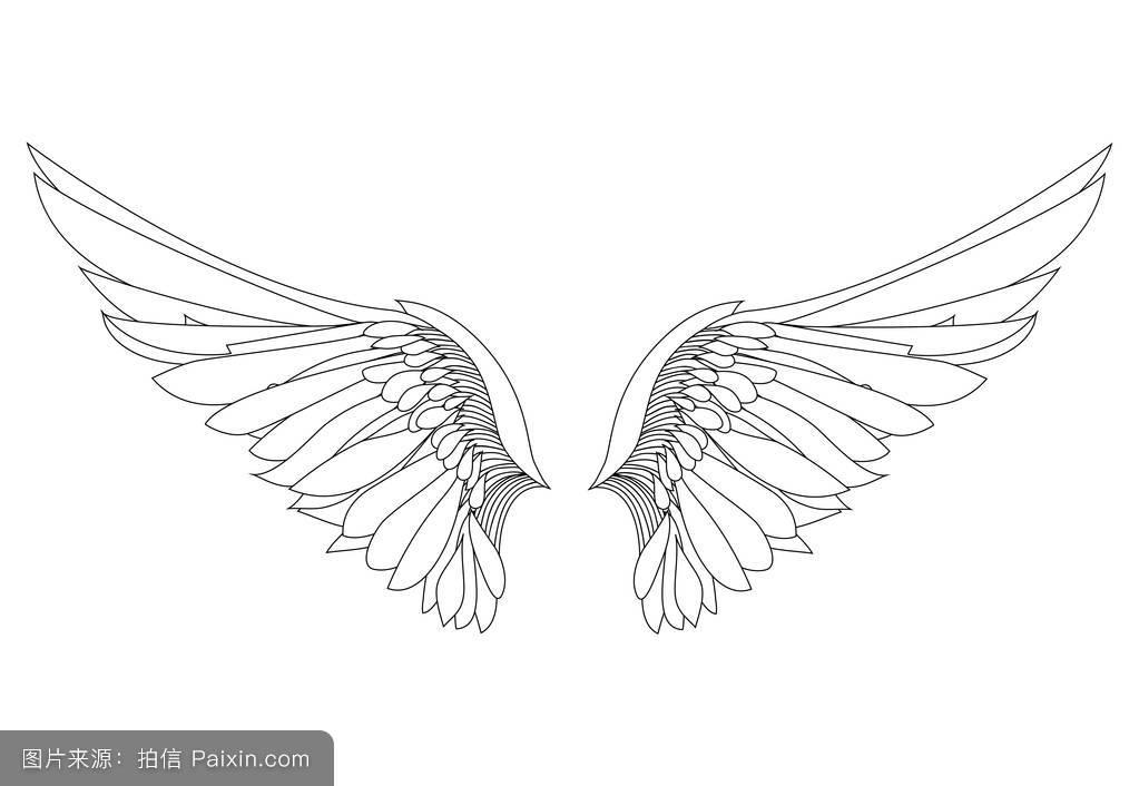 象征,自由,要素,一对,哥特式,素描,动物,鹰,羽毛,插图,装饰,和平,纹身图片