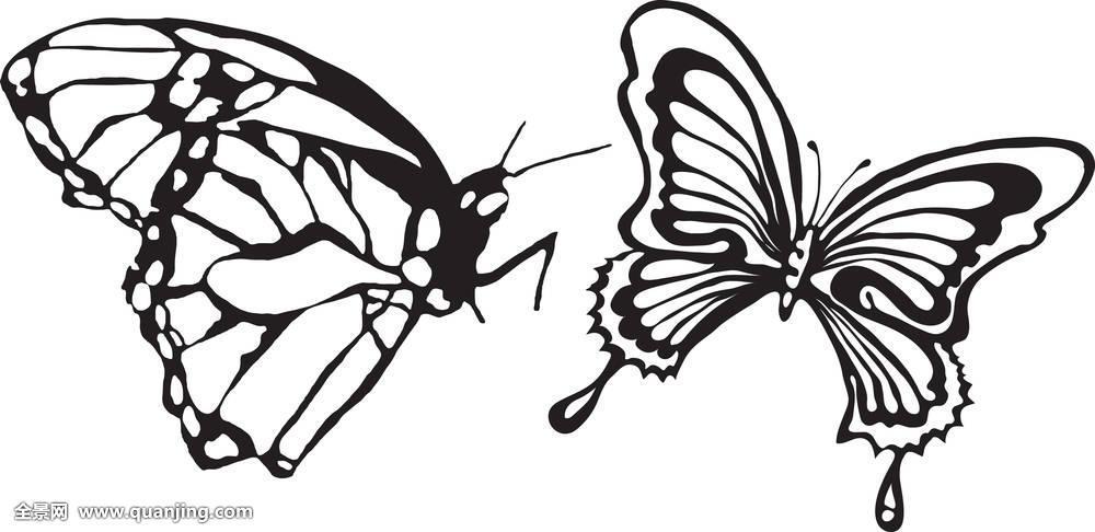 蝴蝶,春天,剪影,纹身,装饰,设计,自然,昆虫,花,抽象,收集,隔绝,插画图片
