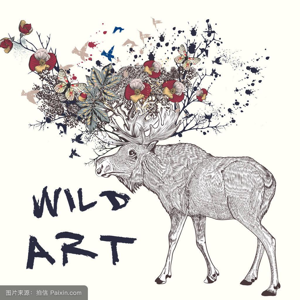 手绘插图中的麋鹿,牛角花,蝴蝶图片